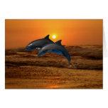 Delfínes en la puesta del sol tarjetas