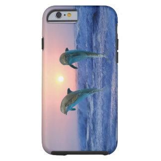 Delfínes en la salida del sol funda de iPhone 6 tough