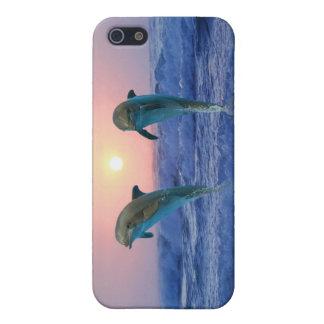Delfínes en la salida del sol iPhone 5 cárcasas