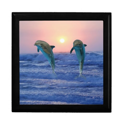 Delfínes en la salida del sol joyero cuadrado grande