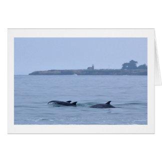 Delfínes en la tarjeta de felicitación Faro-En bla