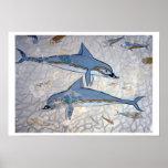 Delfínes (fresco) póster