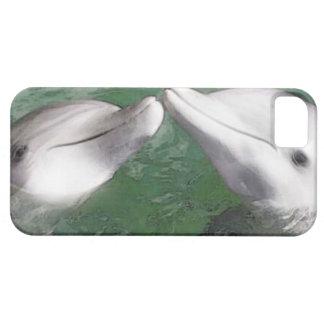 Delfínes iPhone 5 Case-Mate Coberturas