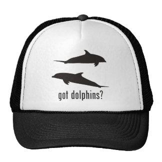 Delfínes Gorro De Camionero