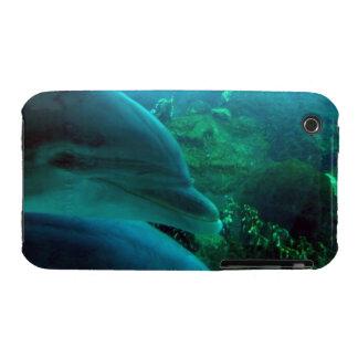 Delfínes iPhone 3 Carcasa