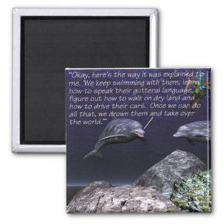 Delfínes, mundo de las masopas+dominación imán cuadrado