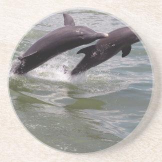 Delfínes Posavasos De Arenisca