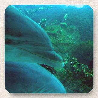 Delfínes Posavasos De Bebida