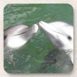 Delfínes Posavasos De Bebidas