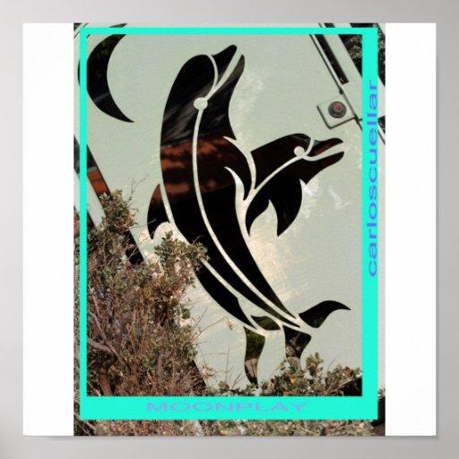 delfínes póster