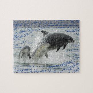 Delfínes Rompecabeza