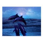 Delfínes que juegan en el océano postales