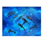 Delfínes que nadan en el océano tarjetas postales