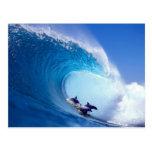 Delfínes que practican surf tarjetas postales