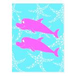 Delfínes rosados postal