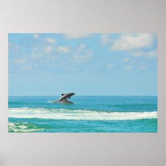Delfínes salvajes comunes que juegan en el poster