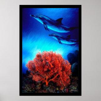 Delfínes sobre corales posters