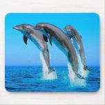 Delfínes Tapetes De Ratón