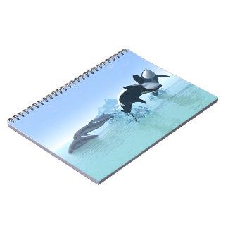 Delfínes y el cuaderno de la orca