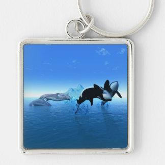 Delfínes y el llavero de la orca