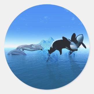 Delfínes y el pegatina de la orca