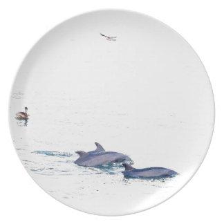 Delfínes y placa del pelícano plato de comida