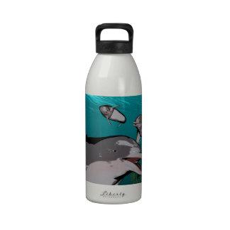 Delfínes y rayos de manta