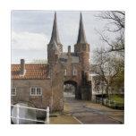 Delft, canales y entrada de la ciudad teja