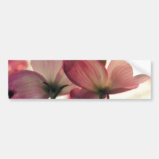 Delicate Afternoon Petals Bumper Sticker