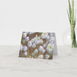 Delicate Blooms Folded Note Card