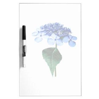 Delicate Blue Lacecap Hydrangea Dry-Erase Board