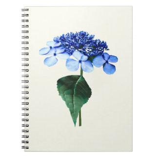 Delicate Blue Lacecap Hydrangea Notebook