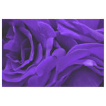Delicate bright purple roses floral photo tissue paper
