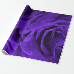 Delicate bright purple roses floral photo wrapping paper