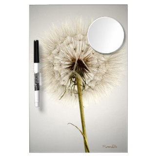 """delicate"" by mysteryella Dry-Erase boards"