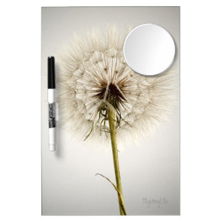 """delicate"" by mysteryella dry erase boards"