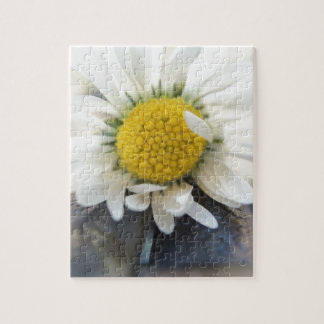 Delicate daisy jigsaw puzzle