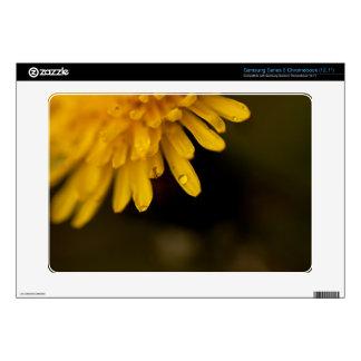 Delicate Dandelion Samsung Chromebook Decals
