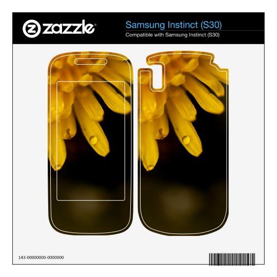 Delicate Dandelion Samsung Instinct Decals