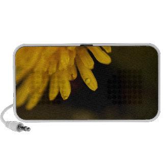 Delicate Dandelion Travelling Speaker