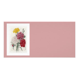 Delicate Dianthus Card