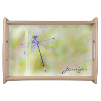 Delicate Dragonfly Serving Tray