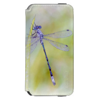 Delicate Dragonfly Watercolor Painting iPhone 6/6s Wallet Case
