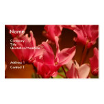 Delicate Flower Cards Double-Sided Standard Business Cards (Pack Of 100)
