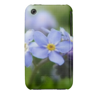Delicate Forget Me Not Flowers iPhone 3 Case