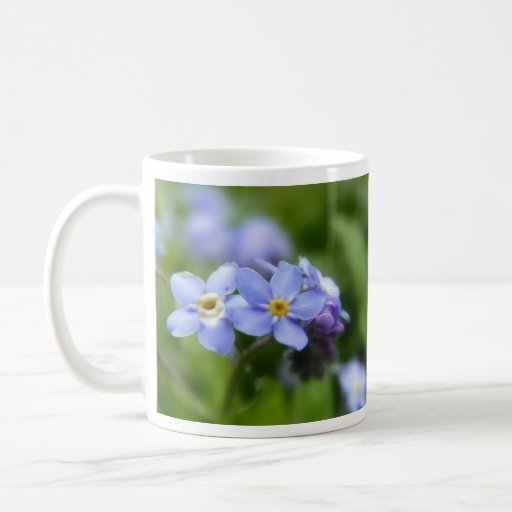 Delicate Forget Me Not Flowers Classic White Coffee Mug