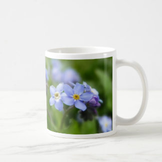 Delicate Forget Me Not Flowers Coffee Mugs