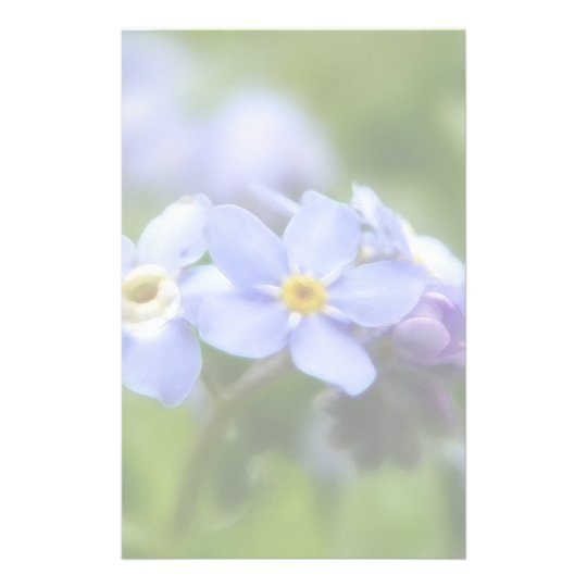 Delicate Forget Me Not Flowers Stationery
