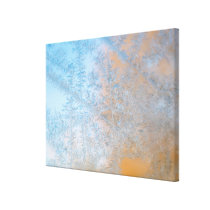 Delicate frost pattern, Wisconsin Canvas Print