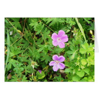 """""""Delicate Geraniums"""" Stationery Note Card"""